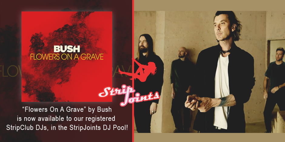 "Bush – ""Flowers On A Grave"""