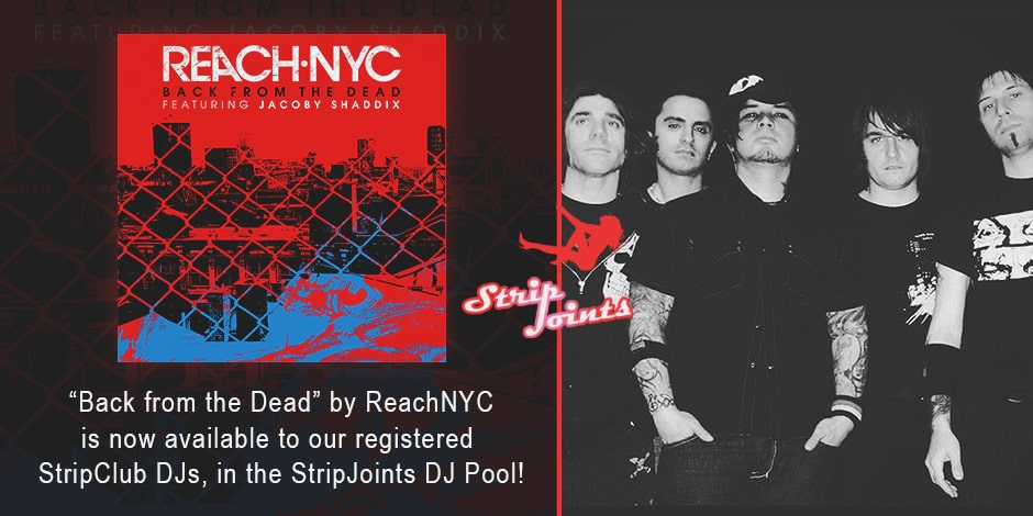ReachNYC – Back From the Dead